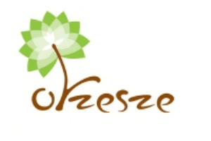 Orzesze - logo 01